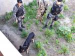 Polícia Civil de Arcoverde desencadeia operação 'Tupã' Ação tem como objetivo a desarticulação de uma associação criminosa.