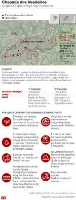 Vegetação da Chapada dos Veadeiros deve demorar mais de um ano para se recuperar após incêndio, estima ICMBio